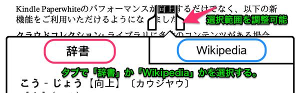 kindle-dictionary-tab